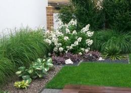 ogrody poznań zielone studio