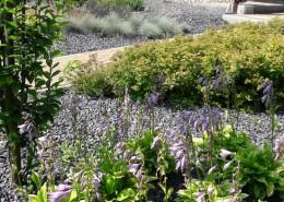 projektowanie i zakadanie ogrodow poznan
