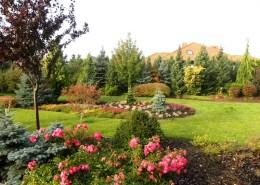 ogrody zakładanie poznań zielone studio