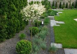 ogrody zakładanie lubon