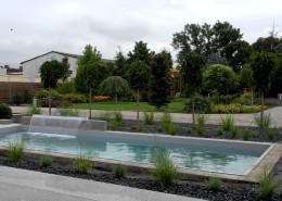 basen w nowoczesnym ogrodzie w Poznaniu