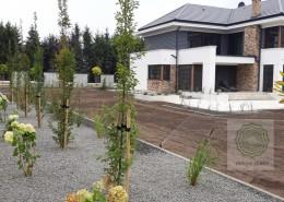 zakładanie trawnika w nowoczesnym ogrodzie