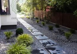 zakladanie ogrodów poznań