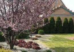 zielone studio ogrody luboń
