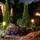 oświetlenie ogrodu